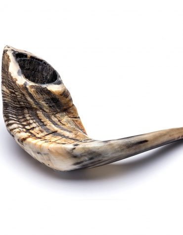 White Shofar kosher